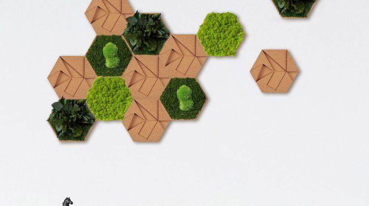 cork moss tray